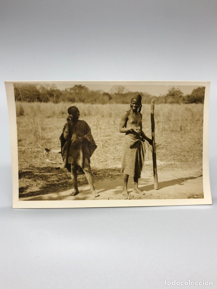 Fotografía antigua: Lote de 108 antiguas fotografías Africa cazadores de animales africanos ,elefantes,marfil... - Foto 30 - 247280240