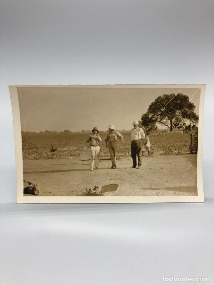 Fotografía antigua: Lote de 108 antiguas fotografías Africa cazadores de animales africanos ,elefantes,marfil... - Foto 32 - 247280240