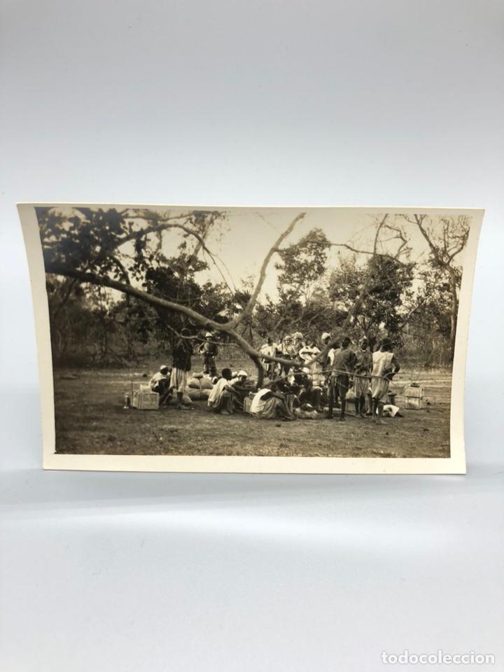 Fotografía antigua: Lote de 108 antiguas fotografías Africa cazadores de animales africanos ,elefantes,marfil... - Foto 38 - 247280240