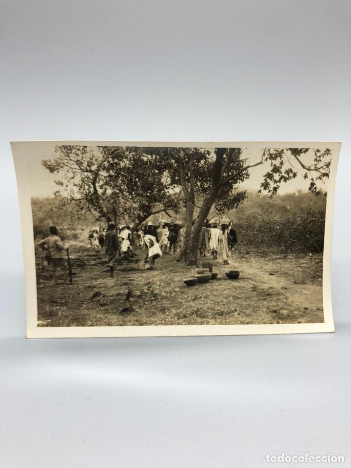 Fotografía antigua: Lote de 108 antiguas fotografías Africa cazadores de animales africanos ,elefantes,marfil... - Foto 40 - 247280240