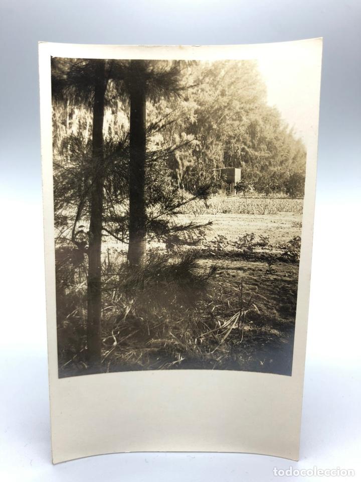 Fotografía antigua: Lote de 108 antiguas fotografías Africa cazadores de animales africanos ,elefantes,marfil... - Foto 45 - 247280240