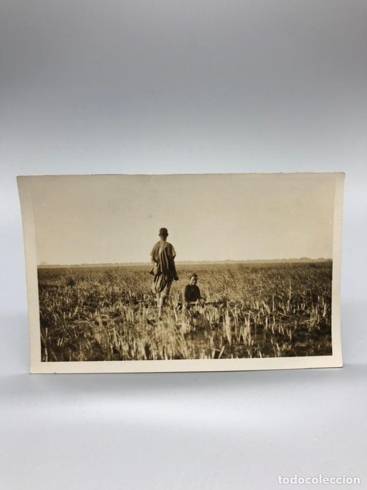 Fotografía antigua: Lote de 108 antiguas fotografías Africa cazadores de animales africanos ,elefantes,marfil... - Foto 52 - 247280240