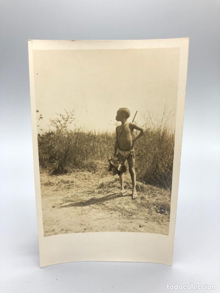 Fotografía antigua: Lote de 108 antiguas fotografías Africa cazadores de animales africanos ,elefantes,marfil... - Foto 56 - 247280240