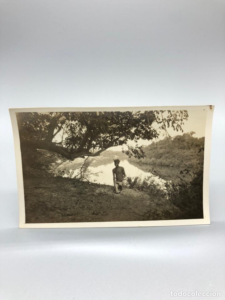 Fotografía antigua: Lote de 108 antiguas fotografías Africa cazadores de animales africanos ,elefantes,marfil... - Foto 60 - 247280240