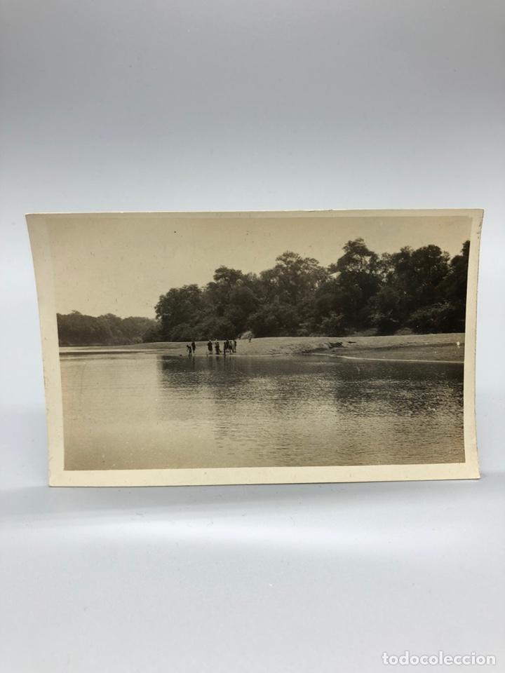Fotografía antigua: Lote de 108 antiguas fotografías Africa cazadores de animales africanos ,elefantes,marfil... - Foto 68 - 247280240