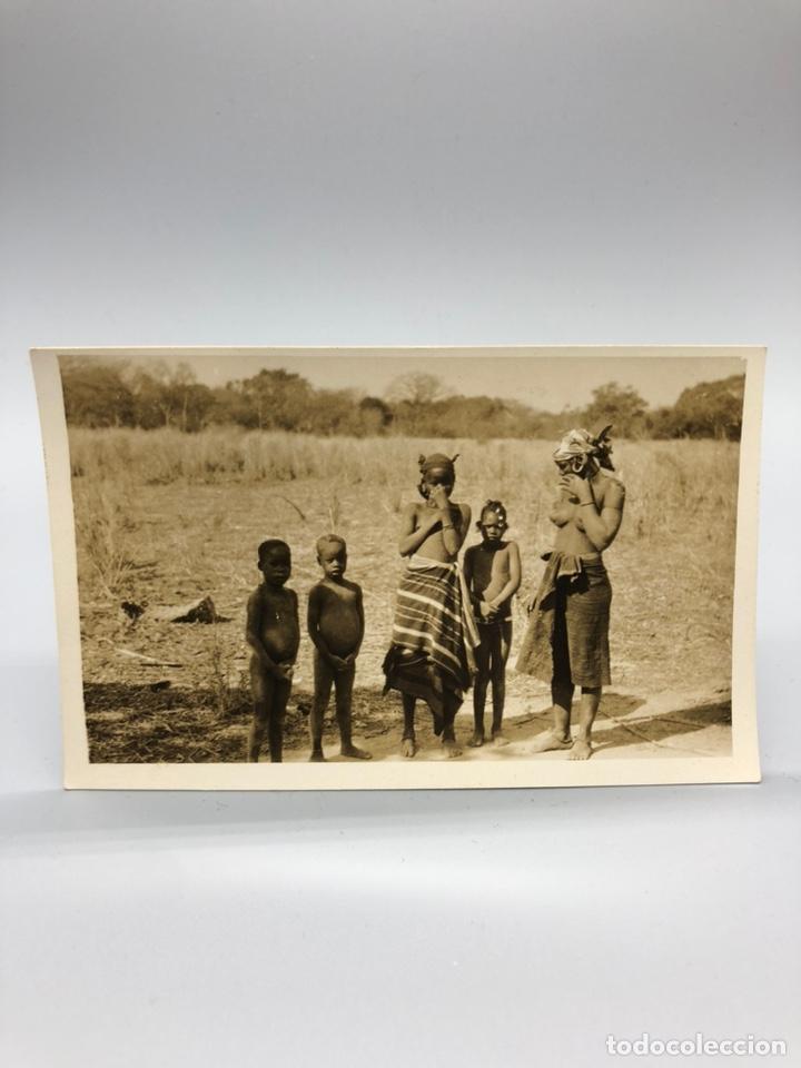 Fotografía antigua: Lote de 108 antiguas fotografías Africa cazadores de animales africanos ,elefantes,marfil... - Foto 72 - 247280240