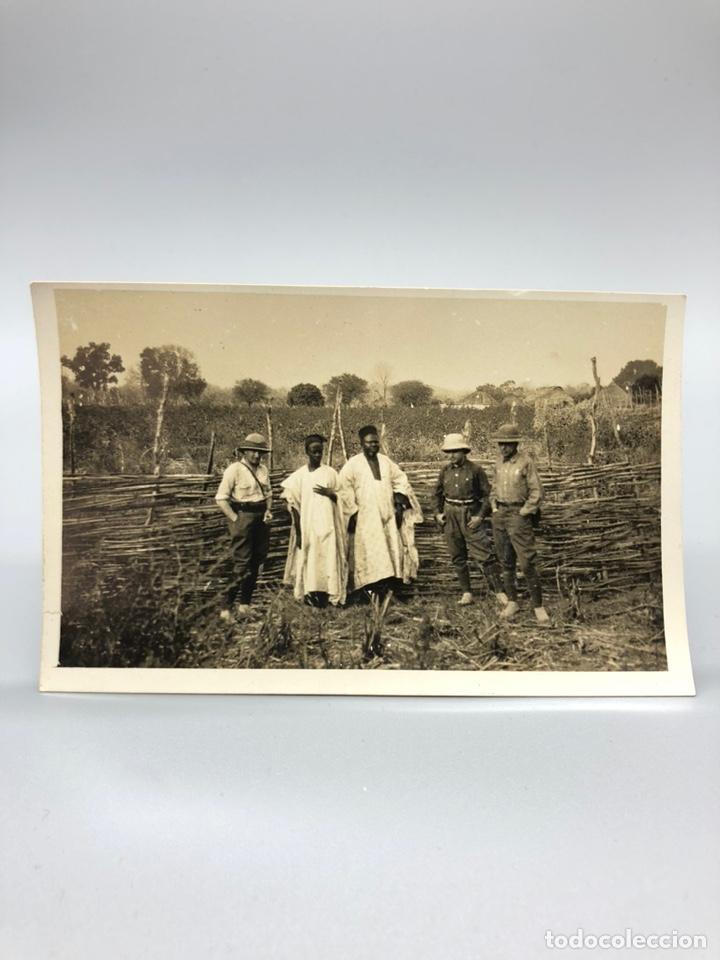 Fotografía antigua: Lote de 108 antiguas fotografías Africa cazadores de animales africanos ,elefantes,marfil... - Foto 74 - 247280240