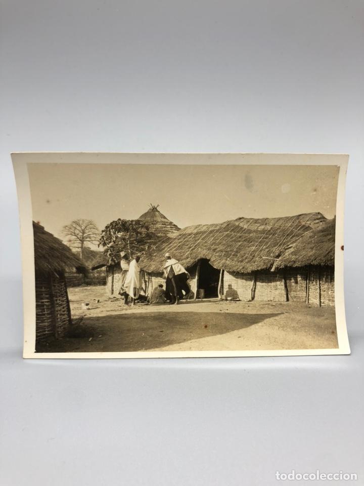 Fotografía antigua: Lote de 108 antiguas fotografías Africa cazadores de animales africanos ,elefantes,marfil... - Foto 92 - 247280240