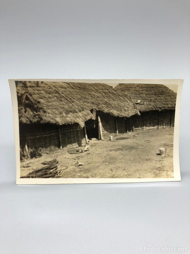 Fotografía antigua: Lote de 108 antiguas fotografías Africa cazadores de animales africanos ,elefantes,marfil... - Foto 95 - 247280240