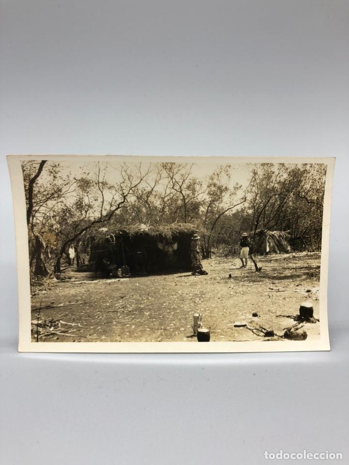 Fotografía antigua: Lote de 108 antiguas fotografías Africa cazadores de animales africanos ,elefantes,marfil... - Foto 107 - 247280240