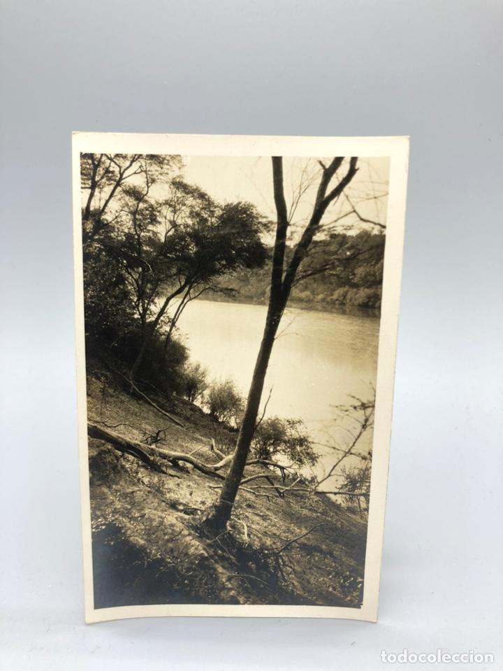 Fotografía antigua: Lote de 108 antiguas fotografías Africa cazadores de animales africanos ,elefantes,marfil... - Foto 109 - 247280240