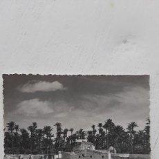 Fotografía antigua: POSTAL ELCHE, SÁNCHEZ, Nº321 PAISAJE. Lote 254646735