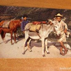 Fotografía antigua: COLECCIÓN ANTIGUA POSTAL VENEZUELA, MUCHACHOS NATIVOS DE LOS ANDES VENEZOLANOS,(EDY. MERIDA). Lote 256075055
