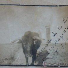 Fotografía antigua: 1945 CON DEDICATORIA: RECUERDO DE LA TIENTA DE LA ESPARRAGUERA. 25-7-45 PUERTO REAL. CADIZ. Lote 41624940