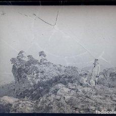 Fotografía antigua: NUMULITE FOTOGRAFÍA CRISTAL ESTEREOSCÓPICO BOSQUE JÓVENES EXPLORADOR PRISMÁTICOS. Lote 103334419
