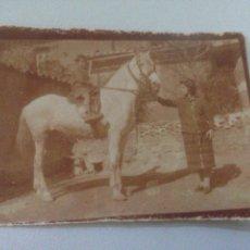 Fotografía antigua: FOTOGRAFÍA ANTIGUA HERMOSO CABALLO BLANCO JUNTO MUJER. Lote 156313842