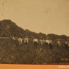 Fotografía antigua: ANTIGUA FOTOGRAFÍA EN BLANCO Y NEGRO - PINADA EN CAMPO DE VALENCIA - AÑO 1920-30S.. Lote 167058472
