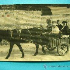 Fotografía antigua: FOTOGRAFIA ANTIGUA BURRO TIRANDO DE CARRITO CON 4 MUJERES ORIGINAL. Lote 25945908