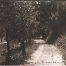 Fotografía antigua: FIGARÓ. SANTA EUGENIA CAMÍ DE CAN FÁBREGA. ANY 1955. Lote 30726510