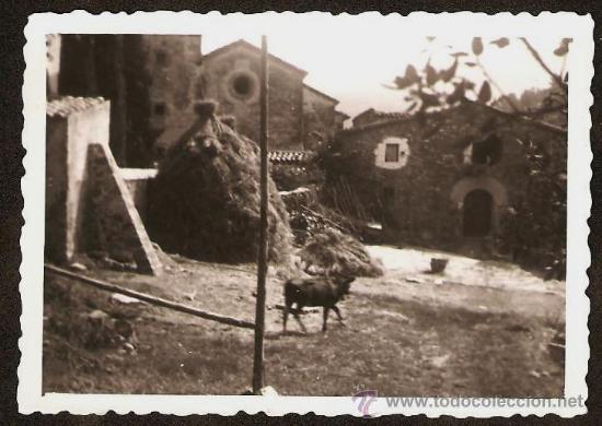 MAS AL VALL DE NEU I CAL IGLESIES. ANY 1953 (Fotografía - Artística)