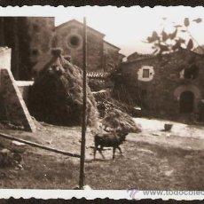 Fotografía antigua: MAS AL VALL DE NEU I CAL IGLESIES. ANY 1953. Lote 30795379