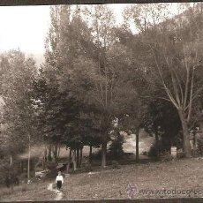 Fotografía antigua: CAMPRODON. FONT DEL VERN. ANY 1933. Lote 30990754
