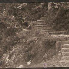 Fotografía antigua: GELIDA. FONT DE CAN TORRENS. ANY 1964. Lote 31177312