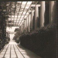 Fotografía antigua: MONTJUIC. PERGOLA INFERIOR. ANY 1955. Lote 31546920