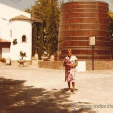 Fotografía antigua: *** PW - 546 - FOTOGRAFIA - SEÑORA POSANDO EN BONITO PAISAJE . Lote 32368237