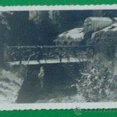 Fotografía antigua: FOTOGRAFÍA DEL PARQUE DE MONDARIZ, PONTEVEDRA. CIRCA 1945. 8,5 X 13,5 CM..LIBRERÍA O´RECUNCHO. Lote 37123473