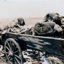 Fotografía antigua: DMITRI BALTERMANTZ. EVACUANDO LAS VICTIMAS DE LA MATANZA DE KERCH 1942 VINTAGE FOTO SOVIETICA GUERRA. Lote 37343156