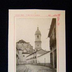Fotografía antigua: CIUDAD REAL-TORRE DE LA CATEDRAL-ESPACIOSO PASEO DEL PRADO DIGNO DE MERITO-CASTILLA-LA MANCHA-542.... Lote 39206671