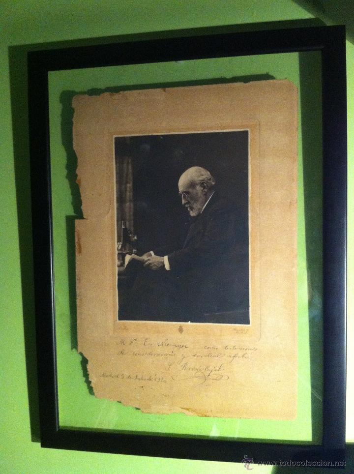 Fotografía antigua: Santiago Ramón y Cajal. Fotografía original. Firmada, dedicada al Doctor. E.Niemeyer. Pieza de museo - Foto 3 - 40170299
