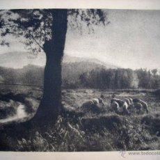 Fotografía antigua: FOTOGRAFIA PICTORIALISTA - PAISATGE - CATALUNYA - 1940'S - BROMÓLEO. Lote 43413758