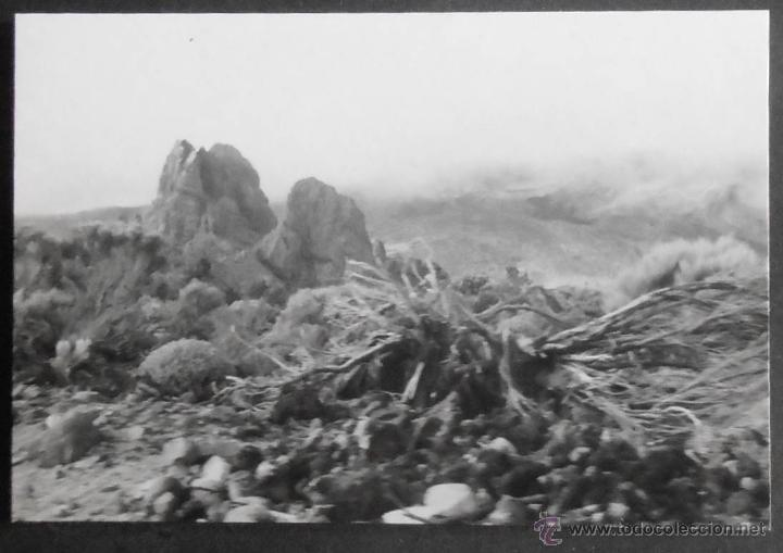 Fotografía antigua: (6519)FOTOGRAFIA 10X7 CM APROX,LOTE DE 35 FOTOGRAFIAS,VALLE DE UCANCA Y LAS CAÑADAS,TENERIFE,1969,V - Foto 5 - 49724714
