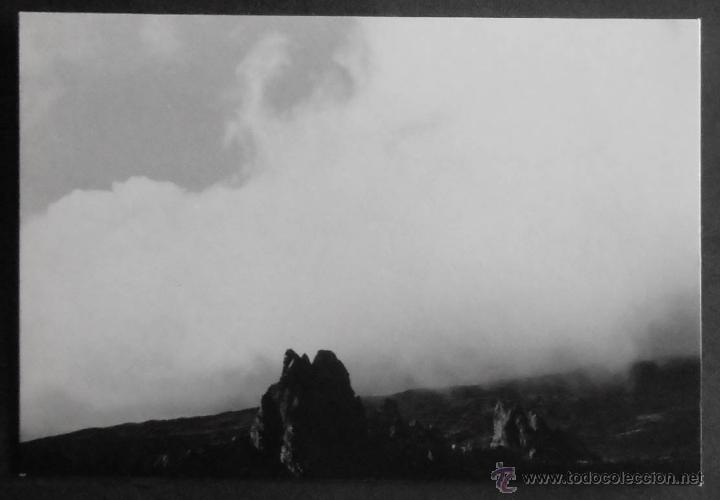 Fotografía antigua: (6519)FOTOGRAFIA 10X7 CM APROX,LOTE DE 35 FOTOGRAFIAS,VALLE DE UCANCA Y LAS CAÑADAS,TENERIFE,1969,V - Foto 14 - 49724714