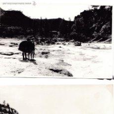Fotografia antica: F- 1138. LOTE DE 3 FOTOGRAFIAS ORIGINALES DE MONISTROL. AÑOS 60.. Lote 51421000