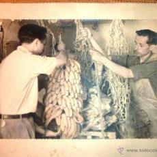 Fotografía antigua: BONITA FOTOGRAFIA PLANTACION DE PLATANOS TRABAJADORES COLGANDO RACIMOS CANARIAS 23 / 18 CM AÑOS 50. Lote 52006541
