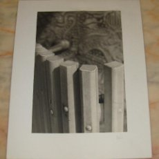 Fotografía antigua: INTEREANTE Y ORIGINAL OBRA DE LALI FOTOGRAFA AÑOS 80 FOTOGRAFIA FIRMADA. Lote 53520012