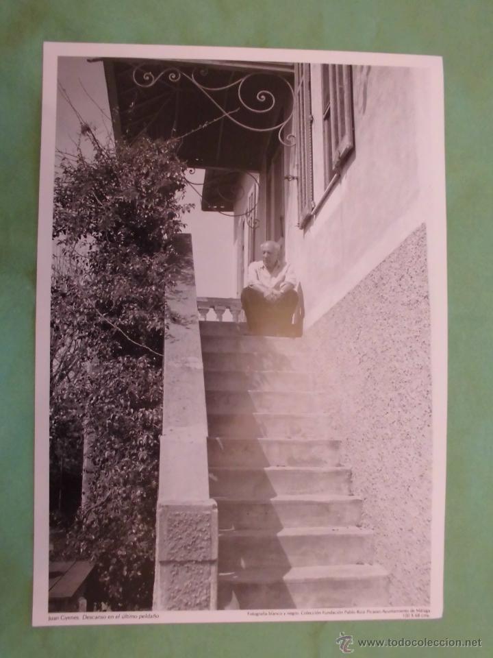 Fotografía antigua: FOTOGRAFÍA DE PABLO RUÍZ PICASSO POR JUAN GYENES - AYUNTAMIENTO DE MÁLAGA - TEXTO EN ESPAÑOL. - Foto 9 - 55083908