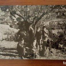 Fotografía antigua: NIÑOS MERENDANDO EN UN ARBOL. Lote 82199980