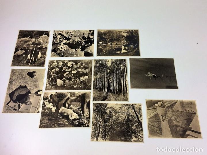 Fotografía antigua: ESCENAS CAMPESINAS. LOTE DE 10 FOTOGRAFÍAS. AUTOR ANÓNIMO. ESPAÑA. ENTRE 1920-35 - Foto 2 - 94391010
