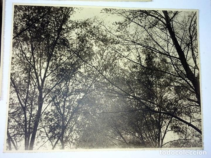 Fotografía antigua: ESCENAS CAMPESINAS. LOTE DE 10 FOTOGRAFÍAS. AUTOR ANÓNIMO. ESPAÑA. ENTRE 1920-35 - Foto 6 - 94391010