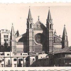 Fotografía antigua: FOTOGRAFIA CATEDRAL DE PALMA DE MALLORCA - -C-9. Lote 98855935