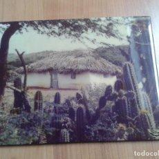 Fotografía antigua: FOTOGRAFÍA DE CASA TÍPICA ISLEÑOS - CURAÇAO ( ANTILLA CARIBEÑA ) AÑOS 60 - CARIBE - 34,5 X 27 CM. Lote 104953323
