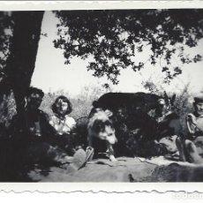 Fotografía antigua: FOTO PERSONAS,PERRO Y BURRO DESCANSANDO DEL TRABAJO EN EL CAMPO. AÑOS 40. Lote 105797607