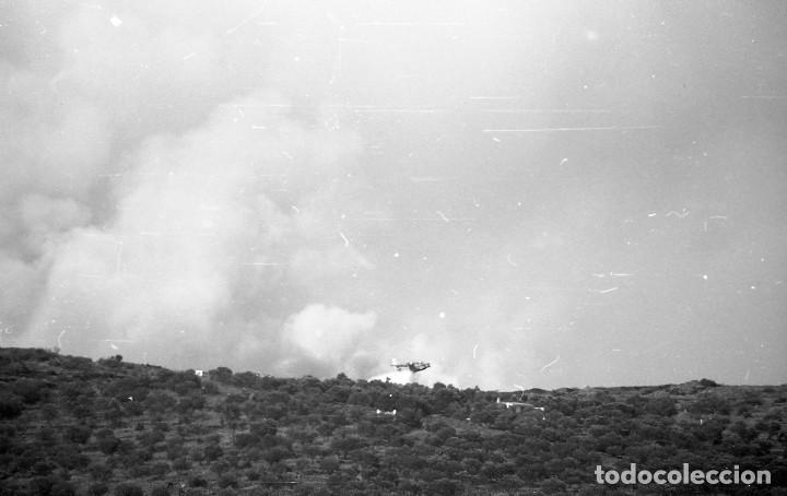 Fotografía antigua: 1981. Hidroavión Canadair extinguiendo un incendio en Cadaqués. 6 neg. 24x36 mm blanco y negro - Foto 4 - 108246823
