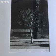 Fotografía antigua: MANUEL LAGUILLO, 61/100, FIRMADA Y CERTIFICADA POR GALERÍA SPECTRUM. Lote 119159652
