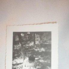 Fotografía antigua: FOTO AÑOS 50; MUJER SENTADA Y ESCRIBIENDO. Lote 130547098