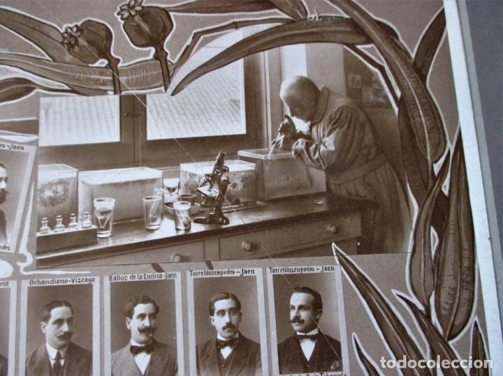 Fotografía antigua: Gran orla de la Facultad de Farmacia de Madrid. Curso 1912-13. Mide 66 x 53 cm.incluyendo paspartú. - Foto 3 - 130612994
